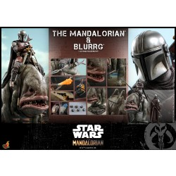 Hot Toys The Mandalorian 1/6 Scale The Mandalorian & Blurrg