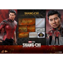 Hot Toys Shang-Chi and the Legend of the Ten Rings 1/6 Scale Shang-Chi